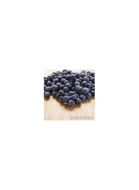 Blueberry Flavor Concentrate, Organic