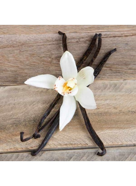 Vanilla Extract Aged (3x Fold), Organic without Diacetyl