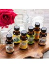 Organic Flavor Oil Sample Pack