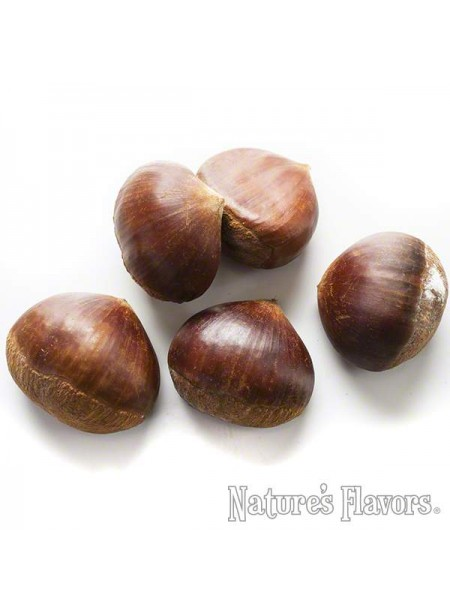 Chestnut Flavor Concentrate (Organic)