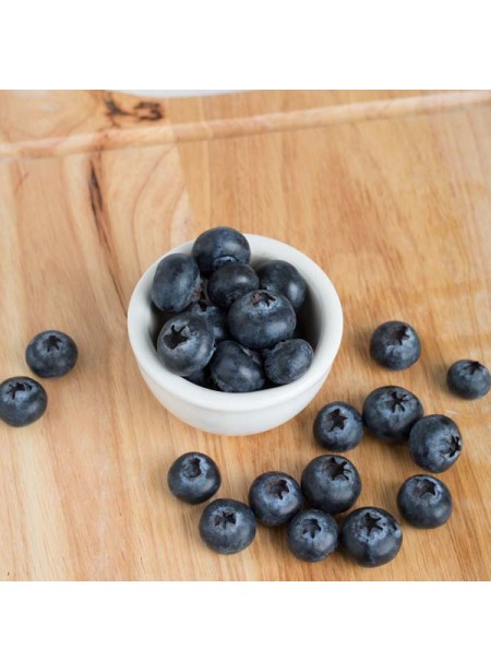 Organic Blueberry Flavor Concentrate for Frozen Yogurt