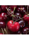 Organic Cherry Flavor Concentrate For Frozen Yogurt