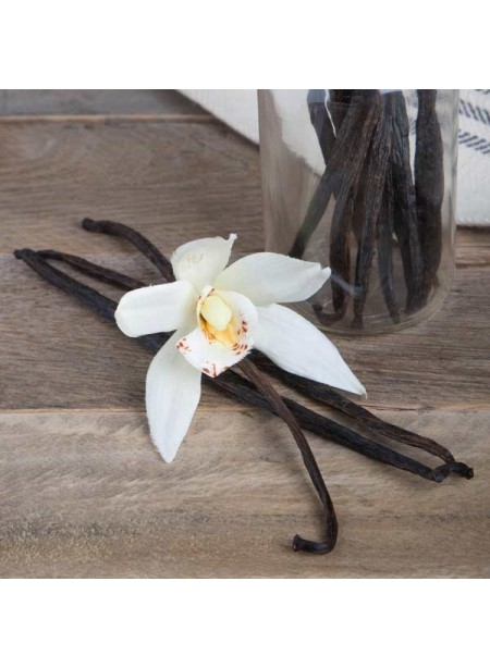 Organic Aged Vanilla Extract Without Diacetyl (2x Fold)