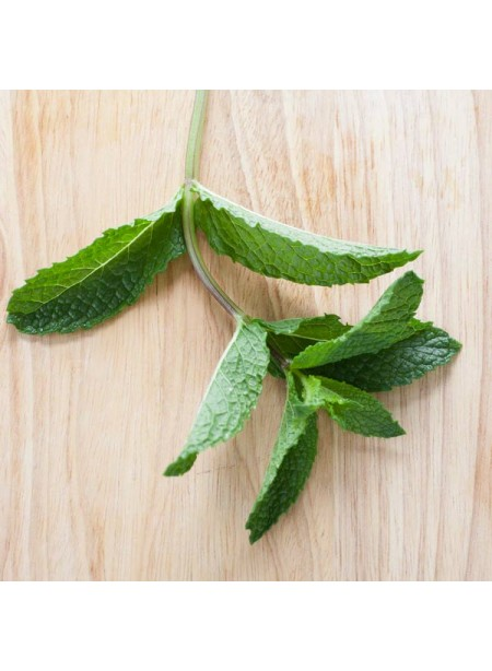 Menthol Flavor Extract, Organic
