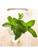 Organic Mint Flavor Extract Without Diacetyl