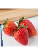 Organic Strawberry Lime Flavor Concentrate