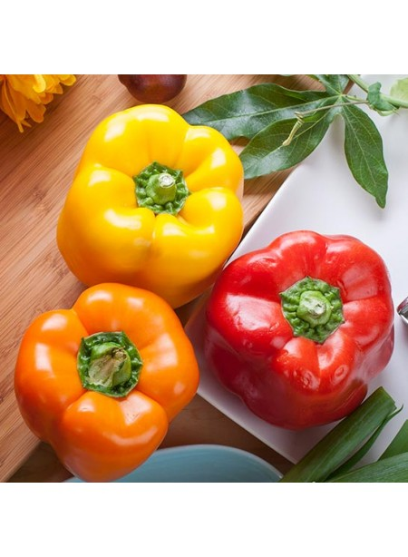 Bell Pepper Flavor Extract, Organic
