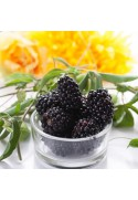 Organic Blackberry Flavor Extract Without Diacetyl