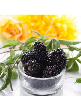 Blackberry Flavor Emulsion for High Heat Applications