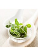 Organic Oregano Flavor Extract Without Diacetyl