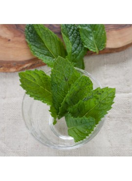 Spearmint Flavor Oil, Organic