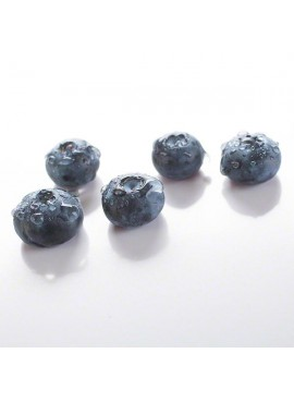 Blueberry Flavor Concentrate For Frozen Yogurt