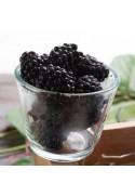 Organic Boysenberry Flavor Extract Without Diacetyl