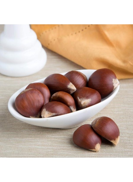 Chestnut Flavor Extract Without Diacetyl, Organic