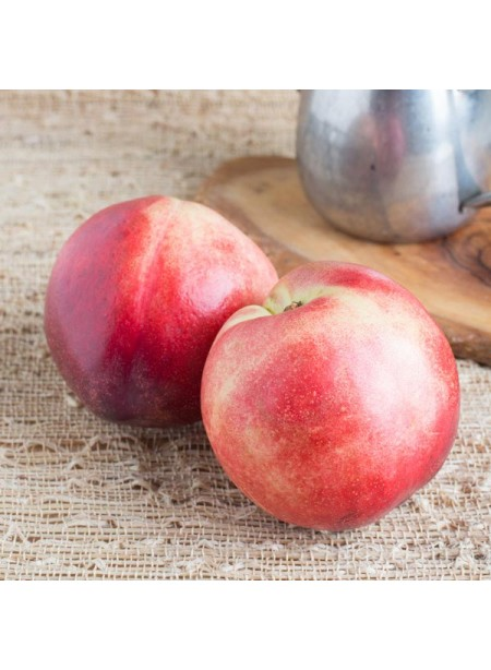 Nectarine Flavor Extract Without Diacetyl, Organic