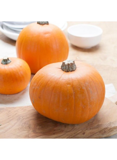 Pumpkin Flavor Extract Without Diacetyl, Organic