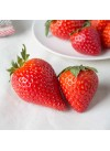 Strawberry Flavor Extract Without Diacetyl (Mid Season), Organic