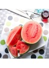 Watermelon Flavor Extract Without Diacetyl