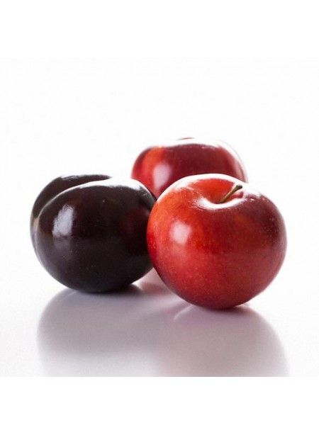 Organic Plum Flavor Concentrate Without Diacetyl, Sweet Japanese Type