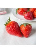 Organic Strawberry Lime Flavor Concentrate Without Diacetyl