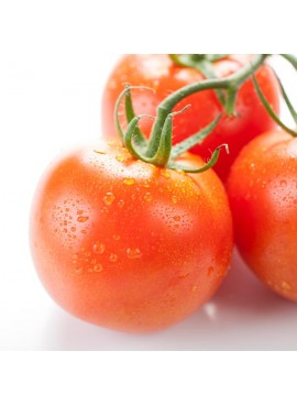 Tomato Flavor Concentrate Without Diacetyl