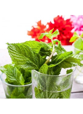 Peppermint Flavor Extract