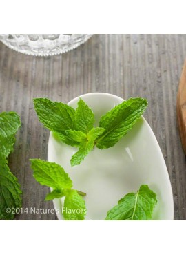 Sante Spearmint Essential Oil