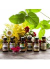Nature's Flavors Sample Pack of Organic Fragrance Oils (Alcohol Soluble)
