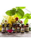Organic Fragrance Oil Sample Pack (Alcohol Soluble)