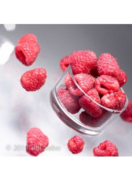 Raspberry Non Dairy Frozen Dessert (Natural, Made with Rice Milk, Sweetened with Xylitol)