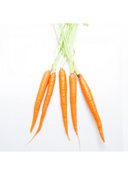 Carrot Flavor Extract Without Diacetyl, Organic