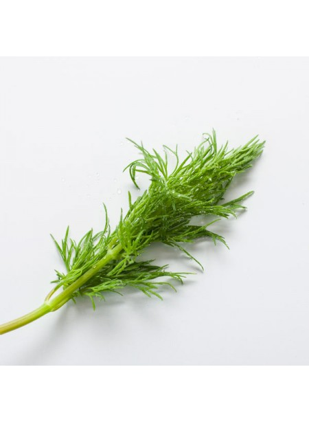 Dill Flavor Extract, Organic