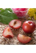 Organic Plum Apricot Flavor Extract