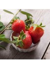 Strawberry Lime Flavor Extract, Organic