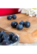 Organic Blueberry Flavor Concentrate Without Diacetyl
