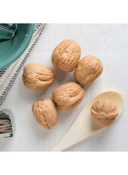 Walnut Flavor Concentrate Without Diacetyl