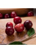 Organic Cranberry Flavor Extract Without Diacetyl