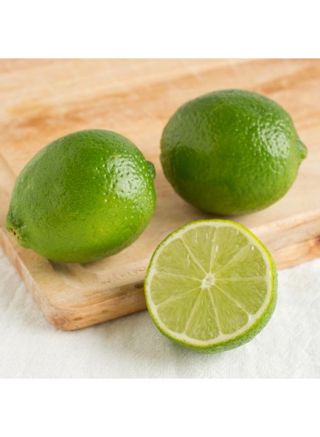 Lime Rickey Flavor Concentrate