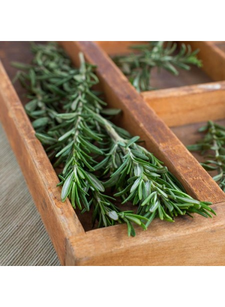 Rosemary Flavor Extract, Organic