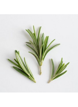 Rosemary Flavor Extract Without Diacetyl, Organic