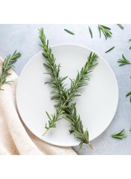 Rosemary Flavor Concentrate, Organic