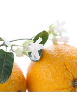 Organic Orange Blossom Fragrance Oil (Vegan, Oil Soluble)