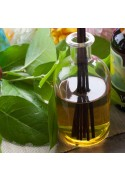 Caribbean Tropicals Fragrance Oil (Oil Soluble)