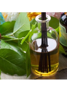 Organic Tropical Fragrance Oil (Alcohol Soluble)