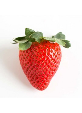 Strawberry Flavor Oil for Lip Balm, Organic