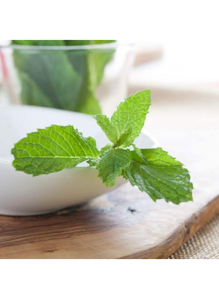 Spearmint Flavor Oil For Chocolate (Organic, Kosher, Vegan, Gluten-Free, Oil Soluble)
