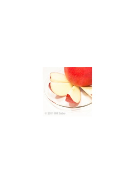 Erythritol Apple Flavor Syrup, Feingold Accepted