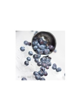 Erythritol Blueberry Flavor Syrup (Feingold Accepted)