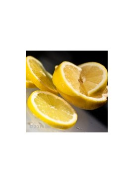 Erythritol Lemon Flavor Syrup (Feingold Accepted)