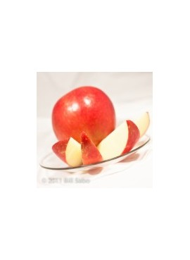 Apple Xylitol Powdered Flavor syrup Just Add Water